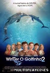 Winter, o Golfinho 2 – Dublado (2014)