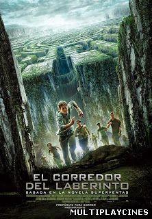 Maze Runner: Correr o Morir / El corredor del laberinto (2014)