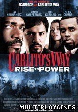 Ver Carlito's Way: Ascenso al Poder / Carlito's Way: Rise to Power (2005) Online Gratis